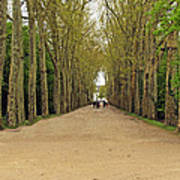Road To Chenonceau Art Print