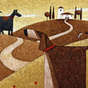 Road To Tuscany Art Print