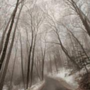 Road To Winter Art Print