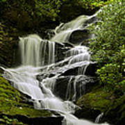 Roaring Creek Falls Art Print