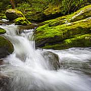 Roaring Fork Great Smoky Mountains National Park Cascade - Gatlinburg Tn Art Print by Dave Allen