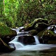 Roaring Fork Waters Art Print