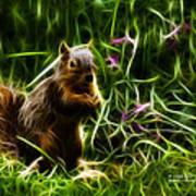 Robbie The Squirrel -0146 - F Art Print