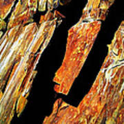 Rock Art 21 Art Print by ABeautifulSky Photography