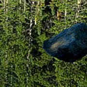 Rock Out Of Reflecting Lake Art Print