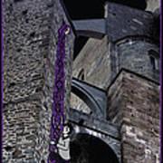 Rockin' Raven Celtic Rapunzel Art Print