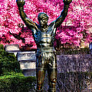 Rocky Among The Cherry Blossoms Art Print