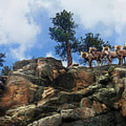 Rocky Mountain Big Horn Herd Art Print by Ric Soulen