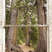 Rocky Mountain Forest Window View Art Print