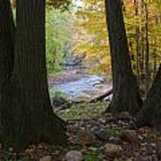 Rocky River Autumn 4 Art Print