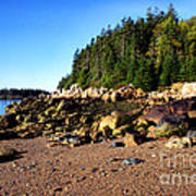 Rocky Shoreline Deer Isle Maine Art Print