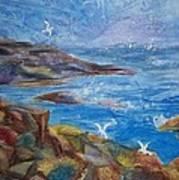 Rocky Shores Of Maine Art Print