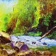 Rocky Stream Art Print