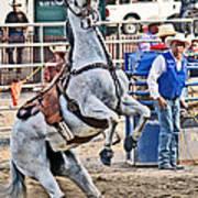 Rodeo Horse Cheers Art Print