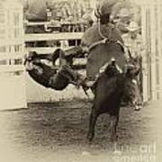 Rodeo Learning To Fly Art Print