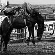 Rodeo Power Of Conviction Art Print