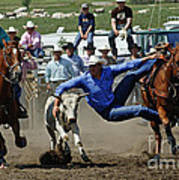 Rodeo Steer Wrestling Art Print