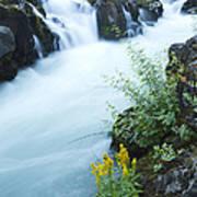 Rogue River Falls 5 Art Print