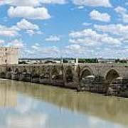Roman Bridge Of Cordoba Art Print