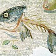Roman Mosaic Art Print