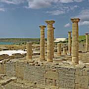 Roman Ruins Of Baelo Claudia Art Print