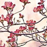 Romance Flora Art Print
