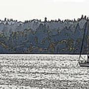 Romance II On Liberty Bay Art Print