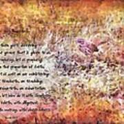 Romans 12 68 Art Print