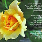 Romans Yellow Rose Art Print