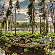 Romantic Meadow Art Print