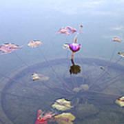 Romantic Pond Art Print