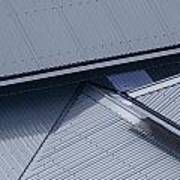Roof Lines - Montague Island - Australia Art Print