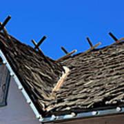 Roof Shingle Art Print