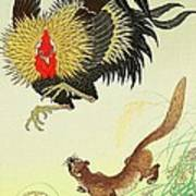 Rooster And Weasel Art Print