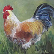 Rooster Of Color Art Print