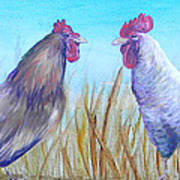 Roosters Art Print