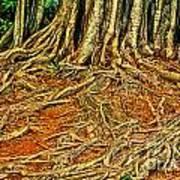 Roots 5 Art Print