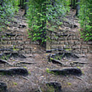 Roots - Cross Your Eyes And Focus On The Middle Image That Appears Art Print
