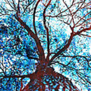 Roots To Branches II Art Print