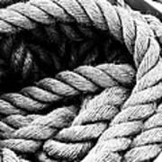 Rope Black And White Art Print