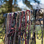 Rope Halters For Horses Lined Art Print
