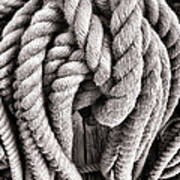 Rope Art Print