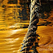 Rope On Liquid Gold Art Print