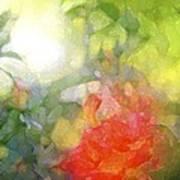 Rose 190 Art Print