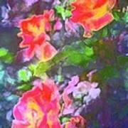 Rose 192 Art Print by Pamela Cooper