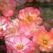 Rose 212 Art Print
