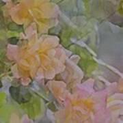 Rose 213 Art Print