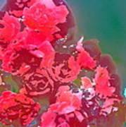 Rose 248 Art Print