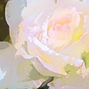 Rose 254 Art Print
