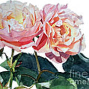 Pink And Yellow Rose Anne Art Print